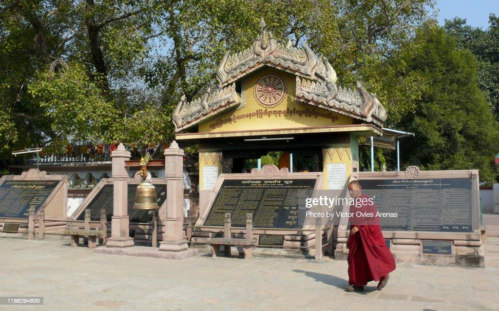 A Buddhist monk at the place of Siddhartha's (Buddha) first sermon (written on the black panels) in Sarnath, Uttar Pradesh, India : Foto de stock