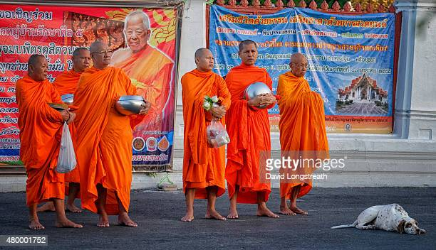 Buddhist monks and novices gather to offer prayers and collect morning offerings from the faithful at the popular Marble Temple Buddhism in Thailand...