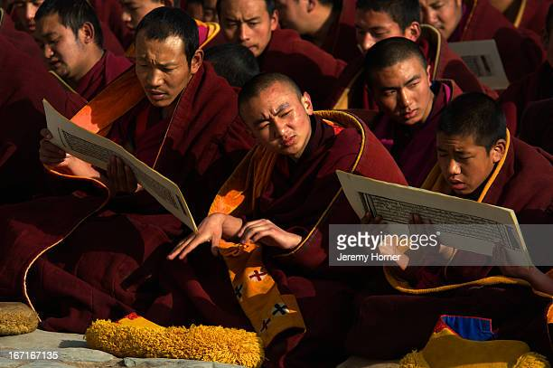 Buddhist monks at prayer Labrang Monastery during Tibetan New Year celebrations Gansu Province China Labrang Monastery is one of six monasteries of...