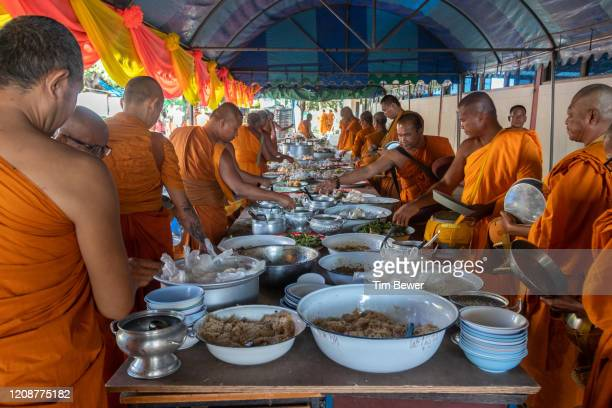 buddhist monks collecting morning alms at a temple. - tim bewer stock pictures, royalty-free photos & images
