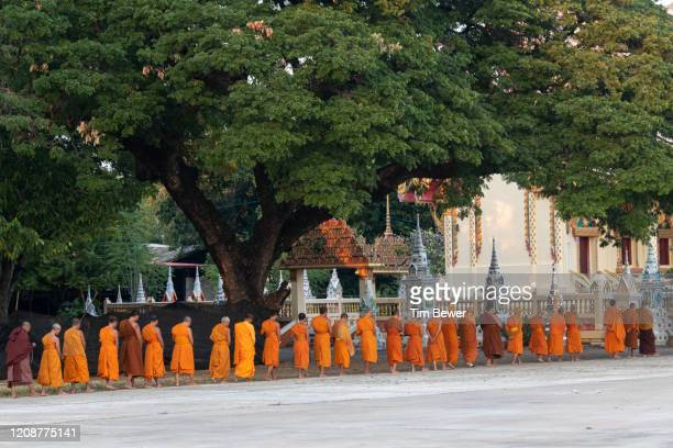 buddhist monks doing walking meditation. - tim bewer fotografías e imágenes de stock
