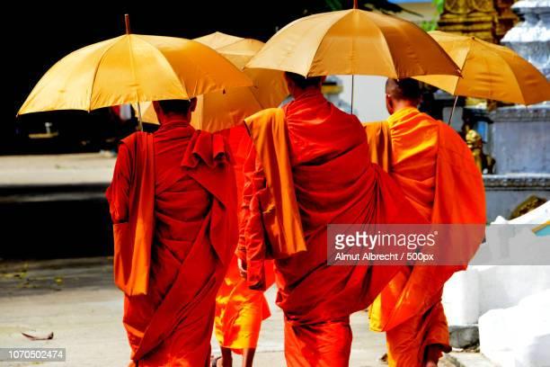 buddhist monks in Battambang
