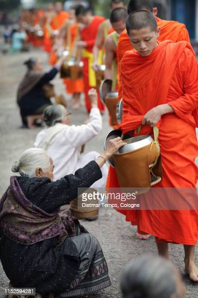 buddhist monks in luang prabang - dietmar temps stock photos and pictures
