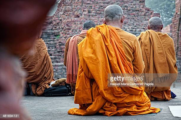 Buddhist monks praying in the Dhamekh stupa