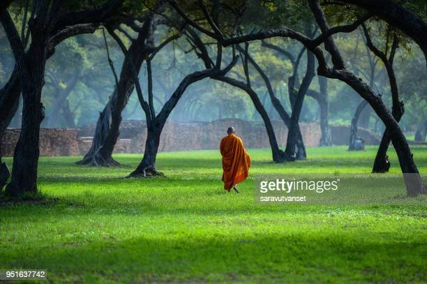 buddhist monks walking across a field in mist at sunrise, thailand - monk stock pictures, royalty-free photos & images