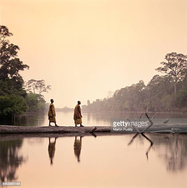 buddhist monks walking along submerged tree - kambodschanische kultur stock-fotos und bilder