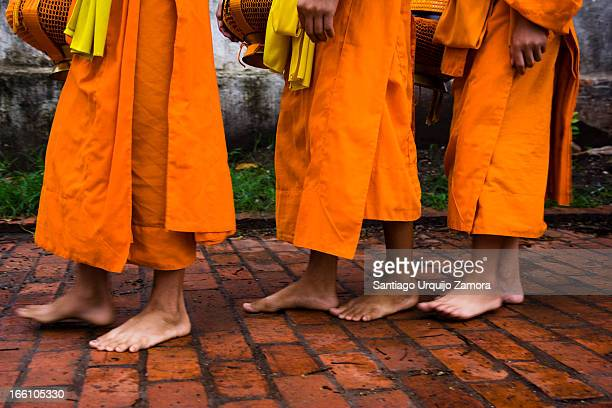 Buddhist monks walking barefooted in the early morning collecting alms . From 5:30 in the morning onward, silent lines of saffron-clad monks walk...