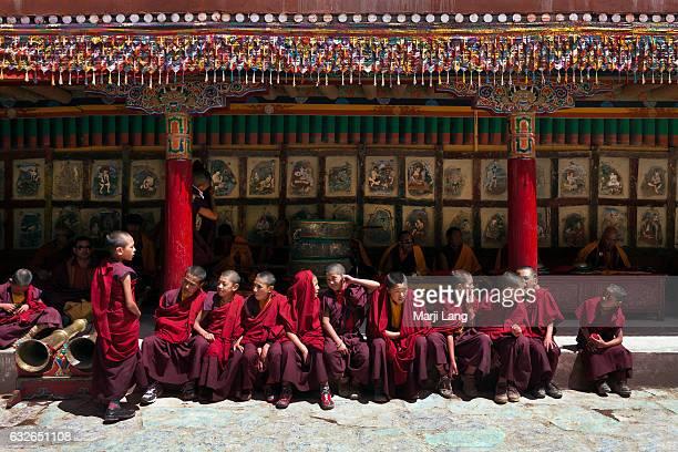 Buddhist novices at Tsechu festival in Hemis gompa Ladakh Jammu and Kashmir India