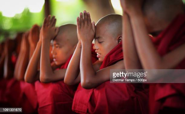 Buddhist novices, Myanmar