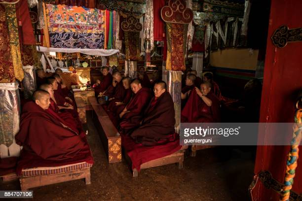 Buddhist nuns during the afternoon Puja, Lhasa, Tibet