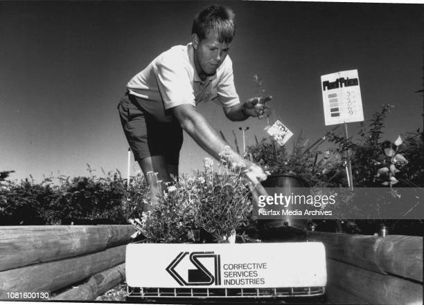 Budding gardener Long Bay inmate John Armstrong hard at work at the prison nursery 'It's relaxing something I will carry on when I leave'This is a...