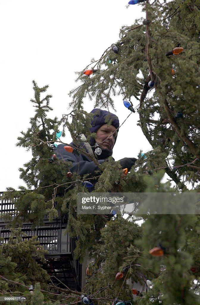 Buddy Paddy operates from a basket on Thursday, undecorating the Capitol Christmas Tree.
