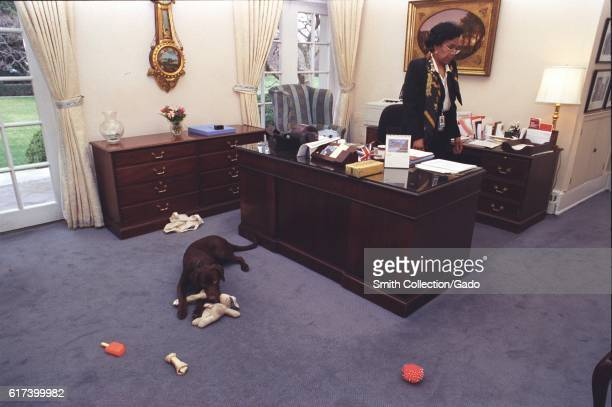 Buddy the Dog First Family's pet playing with chew toys in front of Betty Currie's desk in the Outer Oval Office White House February 6 1998 Image...