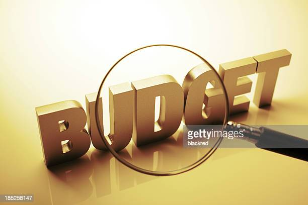 Budget Estimation