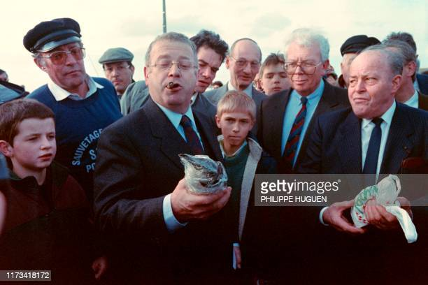 Budget Minister Michel Charasse picks up an oiled bird on February 22 1989 when he came to Ploudalmezeau where the minister spoke about the...