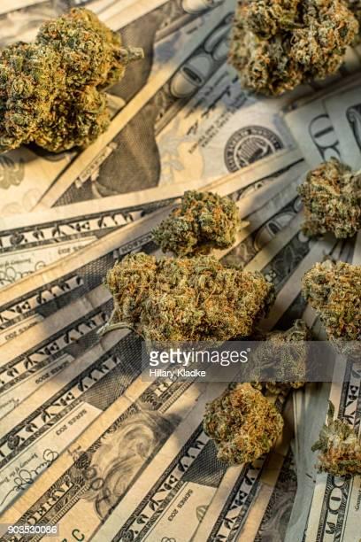 Buds of marijuana on $20 bills
