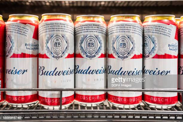 Budweiser beer cans displayed for sale in a supermarket.