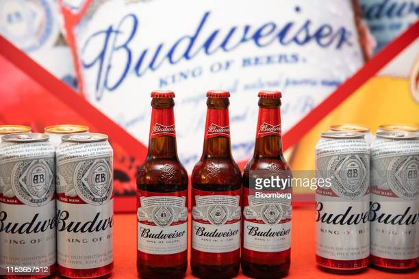 Busch Beer Pictures and Photos - Getty Images