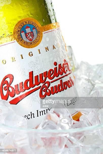 Budweiser Bottle in Ice Bucket