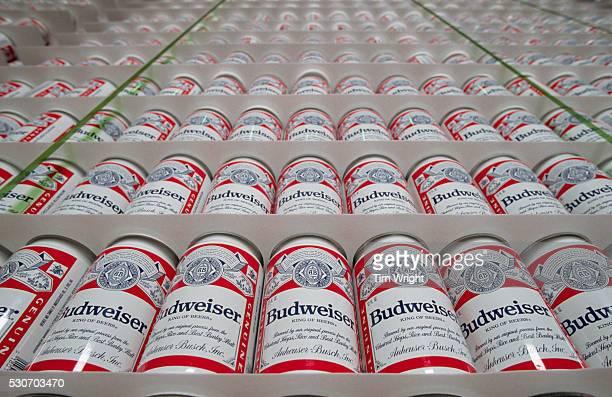 Budweiser Cans
