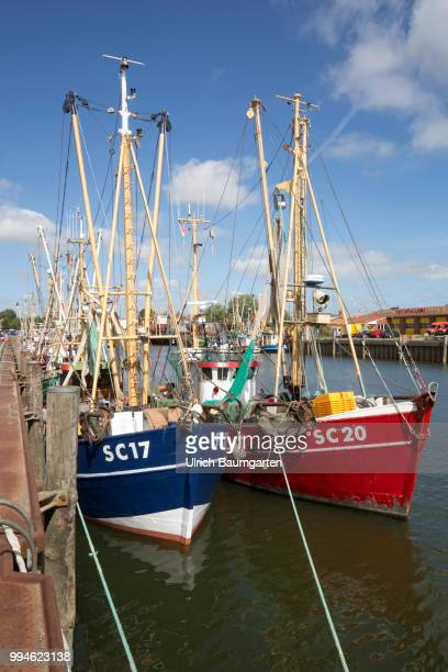 Buesum harbor place directly at the Nort Sea Crab fishing boats in Buesum harbor