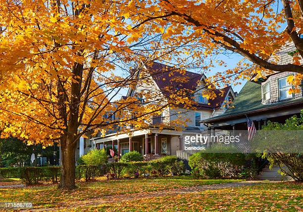 buffalo, new york, usa - herfst stockfoto's en -beelden