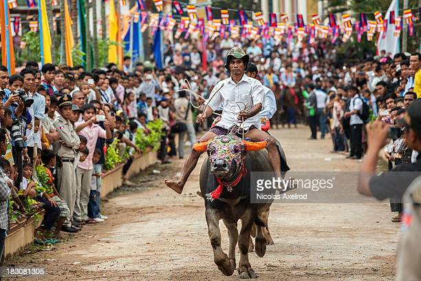 Buffalo riders compete during annual races held as part of the Festival of the Dead on October 4 2013 in Vihear Sour Cambodia Riders race in teams of...