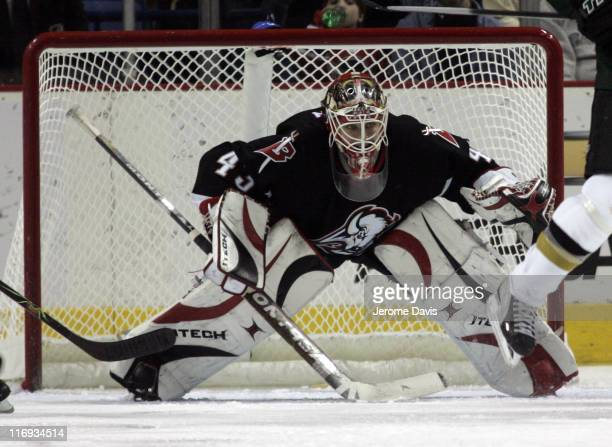 Buffalo Sabres' goalie Martin Biron watches for the puck during a game versus the Dallas Stars at the HSBC Arena in Buffalo NY December 14 2005...