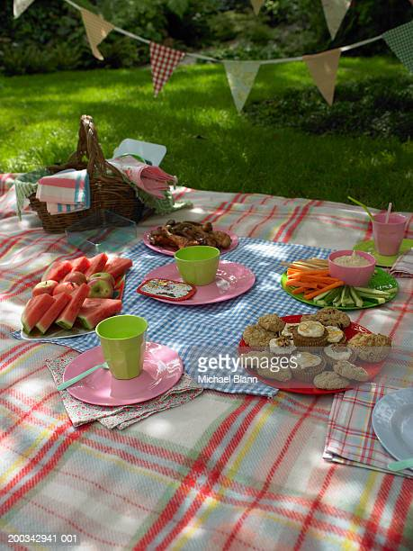 Buffet food laid out on picnic blanket, outdoors