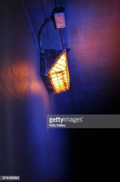 17 Bug Zapper Pictures, Photos & Images - Getty Images