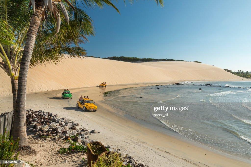 Buggy Bugre in Genipabu beach Natal : Stock Photo