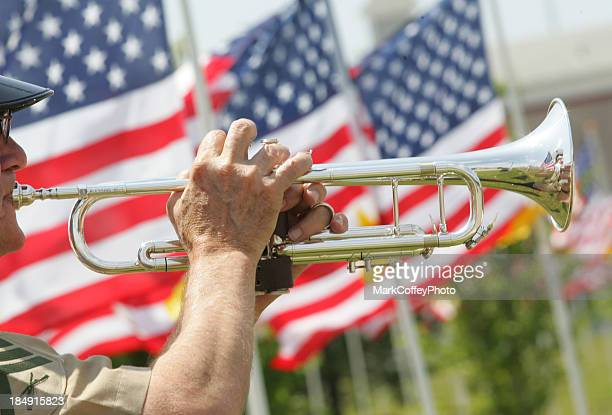 bugler with american flags - bugle stock pictures, royalty-free photos & images