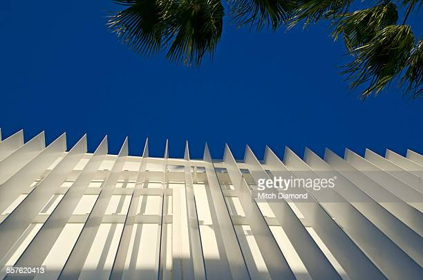 Building architecture and palms