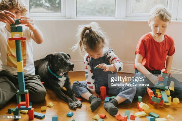 building blocks - group of people stock pictures, royalty-free photos & images
