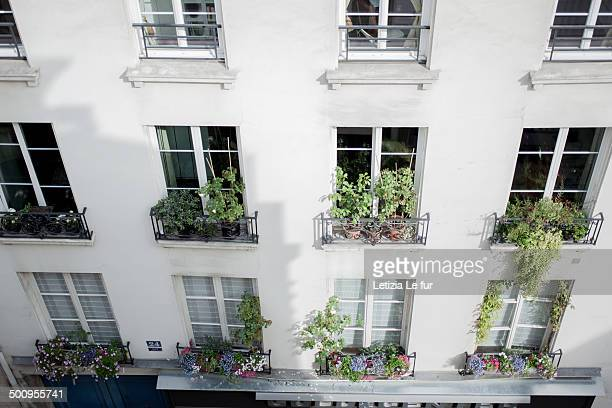 Building in Paris With flowers and plants at the windows