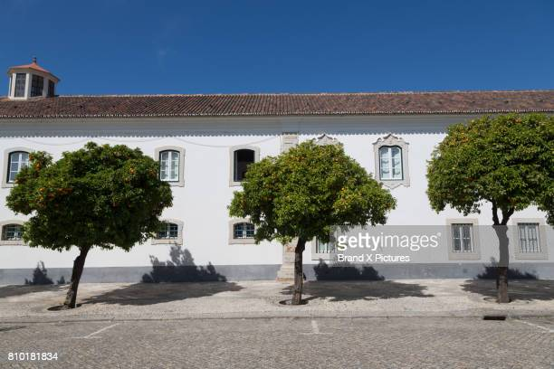 building near the cathedral in faro, algarve - faro city portugal stock photos and pictures