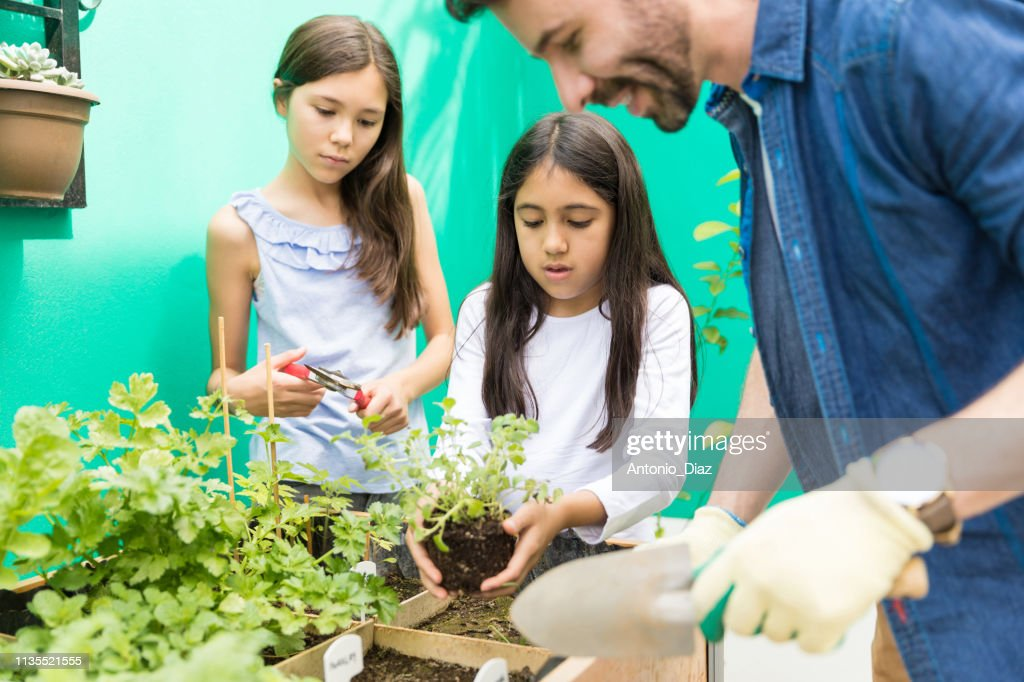 Building Respect For The Environment : Stock Photo