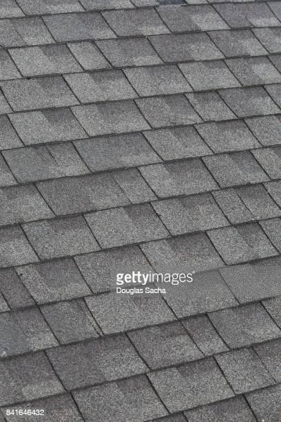 building roof tiles - culebrilla enfermedad fotografías e imágenes de stock