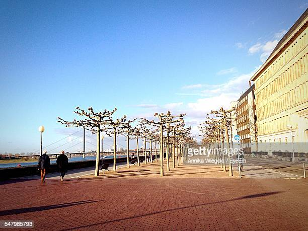 Buildings And Bare Trees Against Sky