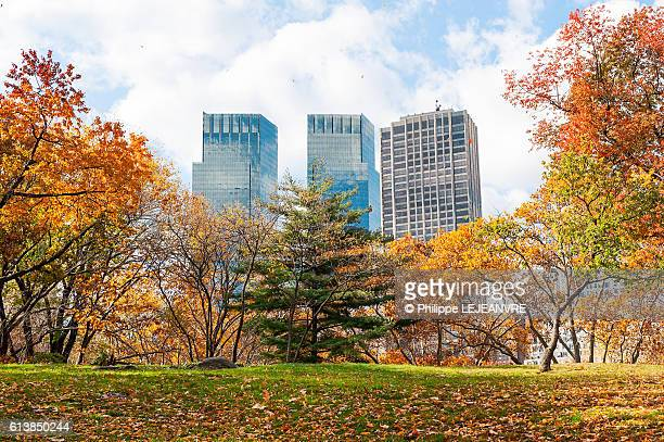 Buildings and colorful trees in Manhattan, New York