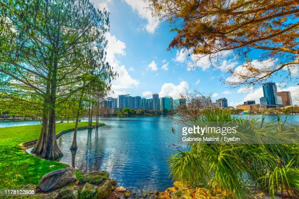 buildings and trees in city against sky - orlando florida stock pictures, royalty-free photos & images