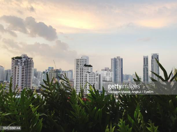 buildings in city against sky during sunset - massa stock pictures, royalty-free photos & images