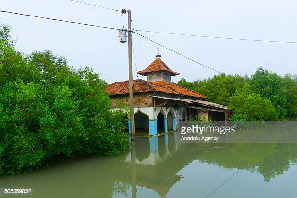 Buildings submerged in sea water due to abrasion in Demak Central Java Indonesia on January 17 2016 Java's coastal villages have been particularly...