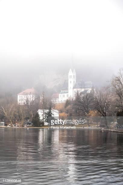 buildings surrounding lake bled on a foggy winter morning - bledsjön bildbanksfoton och bilder