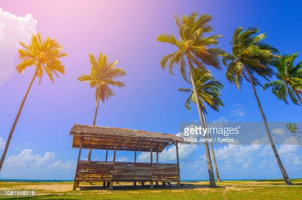 built structure on field by palm trees against sky - terengganu stock pictures, royalty-free photos & images