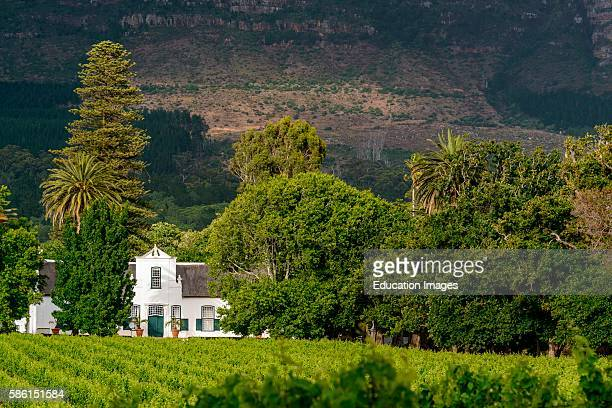 Buitenverwachting Wine Farm Constantia Cape Town South Africa