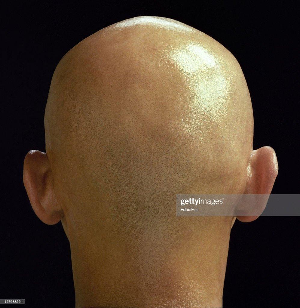 bulb head : Stock Photo