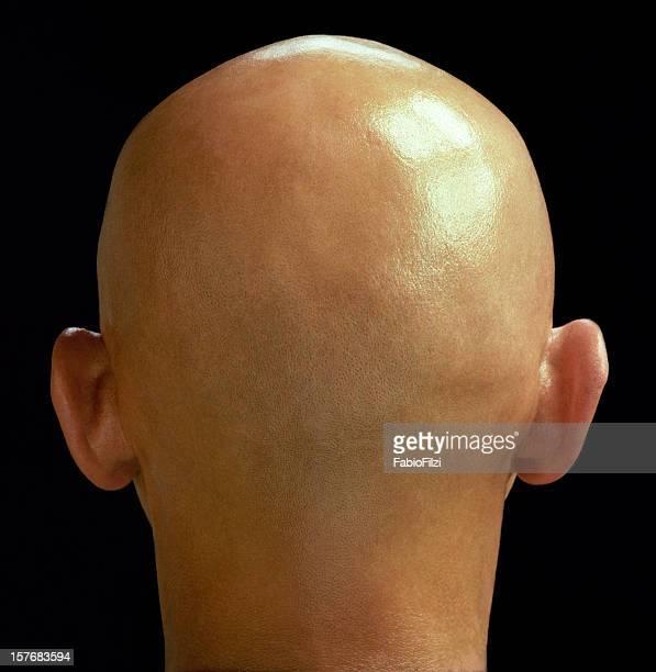 bulb head - fabio filzi stock photos and pictures