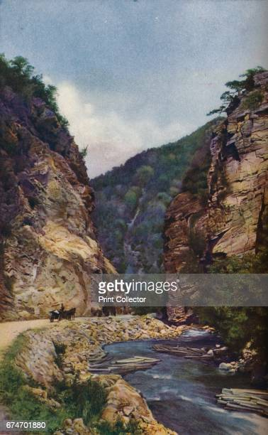 Bulgaria. Carving a gorge in the north slope of the Rhodope range the Elli Dere carries down lumber felled on its cliffs', c1920. The Rhodope...