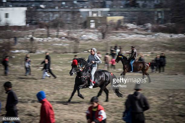 Bulgarian Roma celebrate Horse Easter in the Fakulteta Bulgarian Roma race during Horse Easter in the Fakulteta neighborhood of Sofia on February 28...
